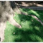 Artificial grass - accessories, artificial grass, fabrics and grids, landscaping products