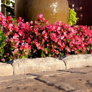 avignon concrete edging, concrete curbing and coping, concrete pavers, landscaping products