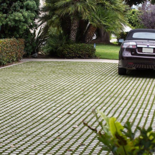 Drivable Grass