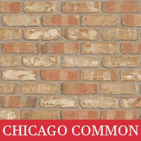 Chicago Common