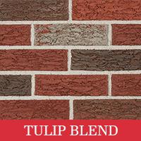 tulip blend swatch